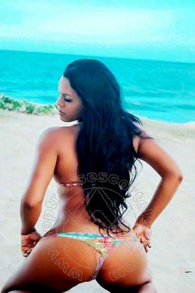 Sirena Hot  PRATO 3397412411